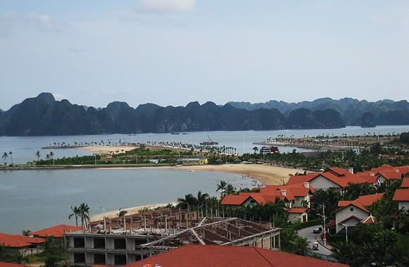 Đào-Tuấn-Châu-vinh-ha-long