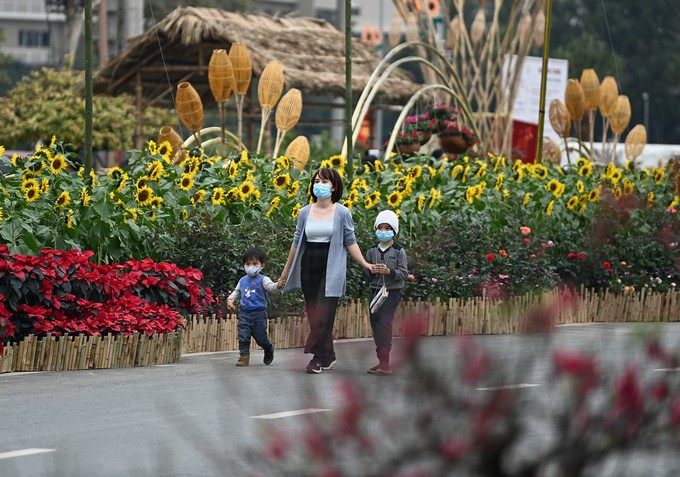 Cảnh đẹp đường đường hoa Tết ở Hoài Đức, Hà Nội