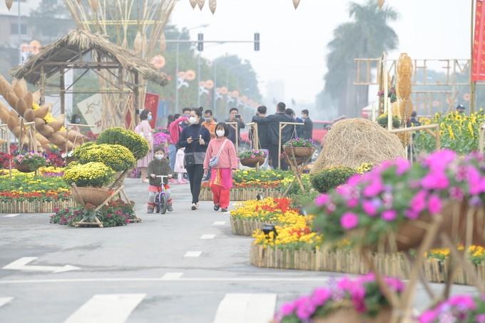 Cảnh đẹp đường đường hoa Tết ở Hoài Đức, Hà Nội 2