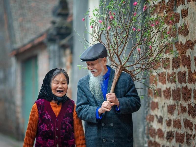 Ngắm bức ảnh đẹp mùa xuân trên quê hương Việt Nam 2021 1