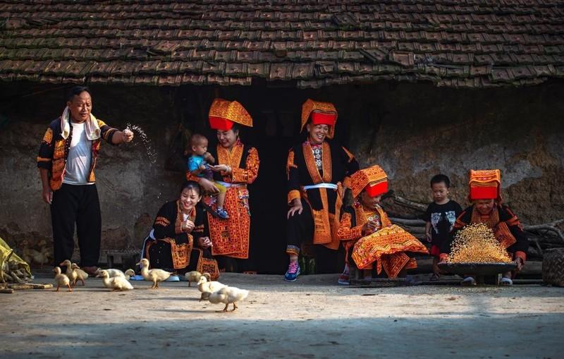 Ngắm bức ảnh đẹp mùa xuân trên quê hương Việt Nam 2021 3
