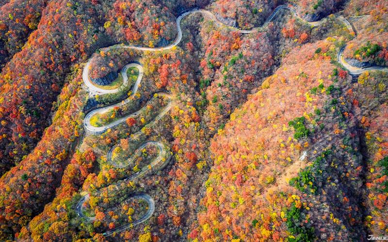 Tham quan cảnh đẹp dèo Irohazaka, Nhật Bản vào mùa thu
