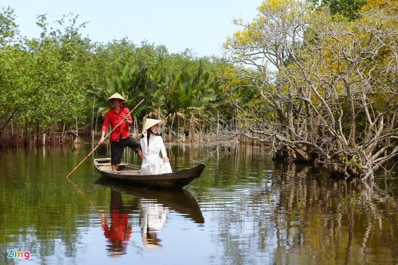 Cảnh đẹp rừng Rú Chá, Huế vào cuối thu 6