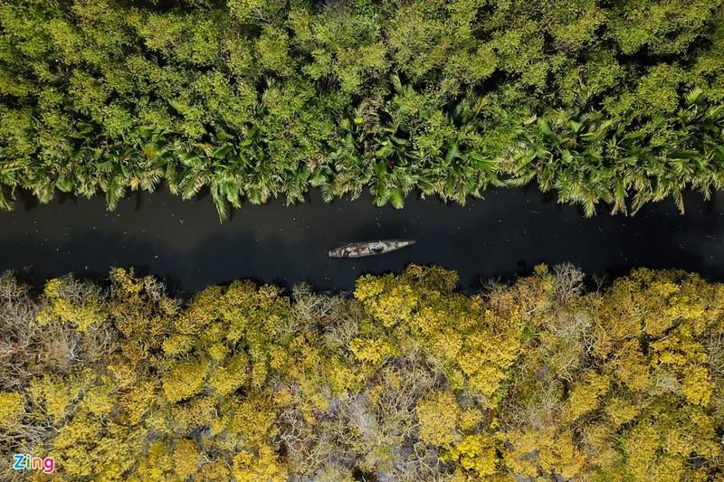Cảnh đẹp rừng Rú Chá, Huế vào cuối thu 7