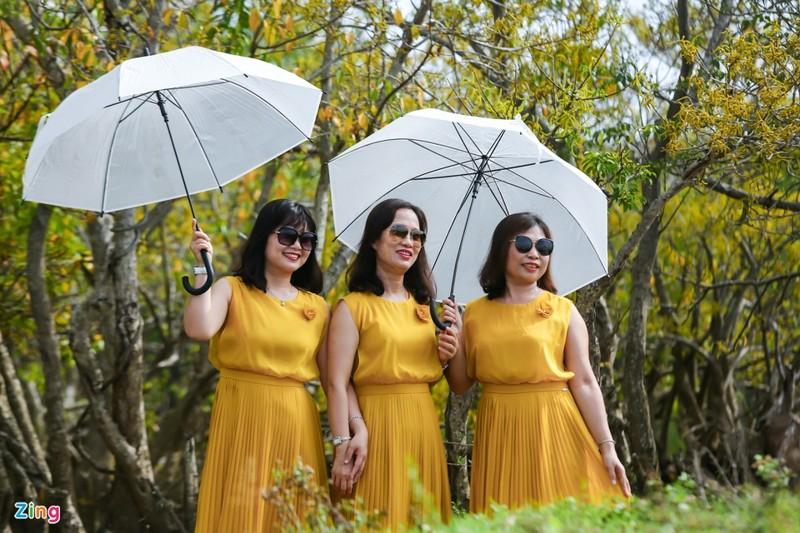 Cảnh đẹp rừng Rú Chá, Huế vào cuối thu 10