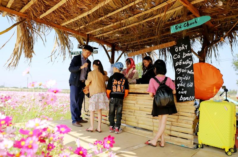 Cánh đồng hoa cánh bướm ở huyện Thạch Hà, Hà Tĩnh 4