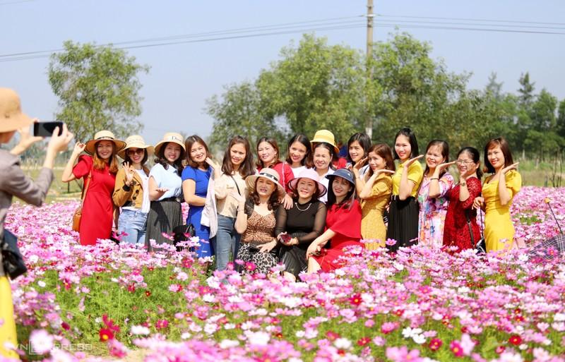 Cánh đồng hoa cánh bướm ở huyện Thạch Hà, Hà Tĩnh 10