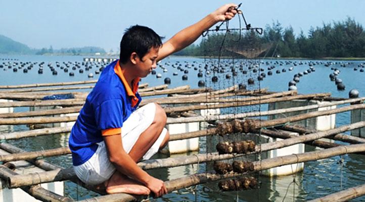 Cơ sở sản xuất ngọc trai ở Đảo Phú Quốc