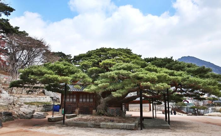 địa diểm du Lịch ở Seoul, Hàn Quốc 8