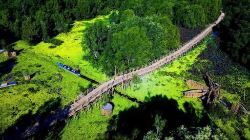 travel-lich-rung-tram-tra-su-an-giang-04