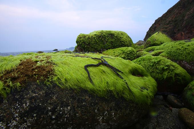 Eo gió ở Quy Nhơn Bình Định 6