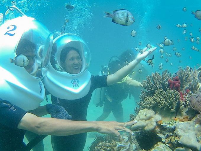 Lặn mũ dưới dáy biển Nha Trang