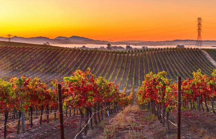 Top 10 địa điểm du lịch ngắm cảnh đẹp mùa thu ở Mỹ 5