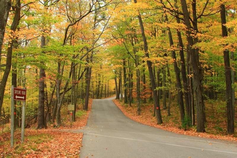 Top 10 địa điểm du lịch ngắm cảnh đẹp mùa thu ở Mỹ 7