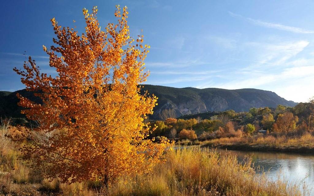 Top 10 địa điểm du lịch ngắm cảnh đẹp mùa thu ở Mỹ 10