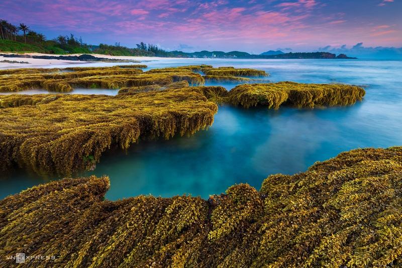 Top 12 địa điểm du lịch ở biển Phú Yên 5
