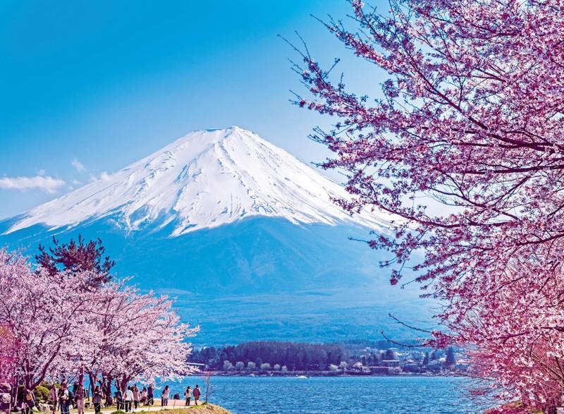 Hồ Ashi ngắm hoa anh Đào