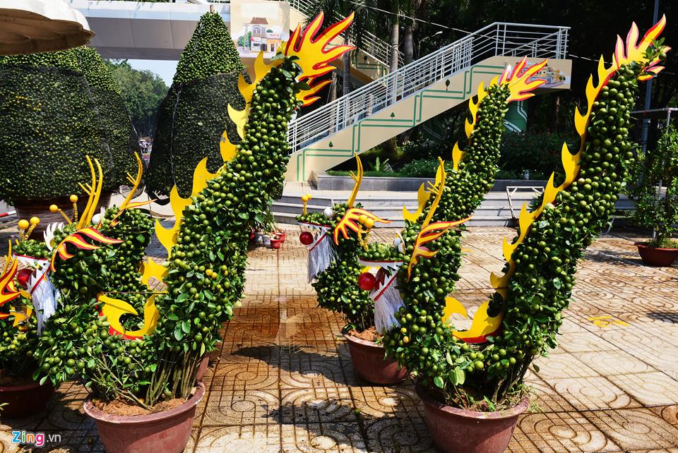 Trái, cây cảnh độc lạ trưng Tết Kỷ Hợi ở TP.HCM 12