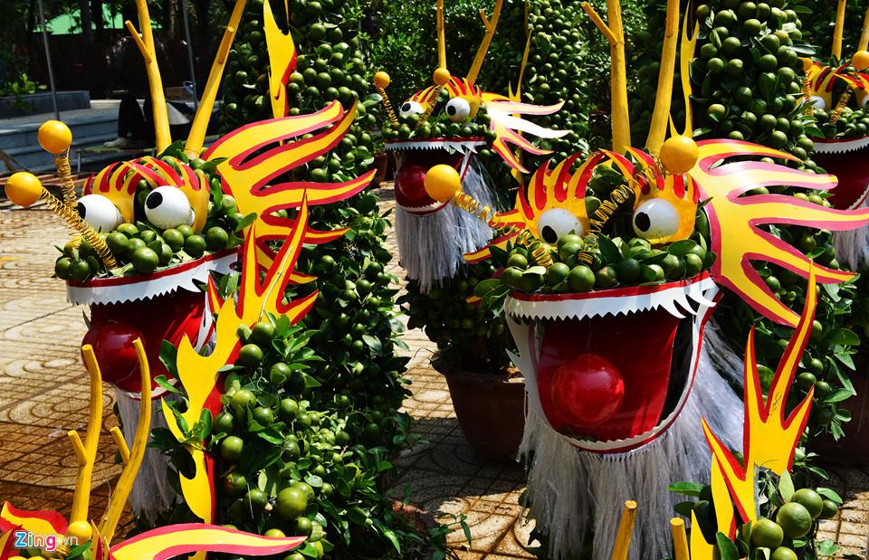 Trái, cây cảnh độc lạ trưng Tết Kỷ Hợi ở TP.HCM 13